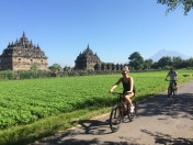 Temples Cycling Tour